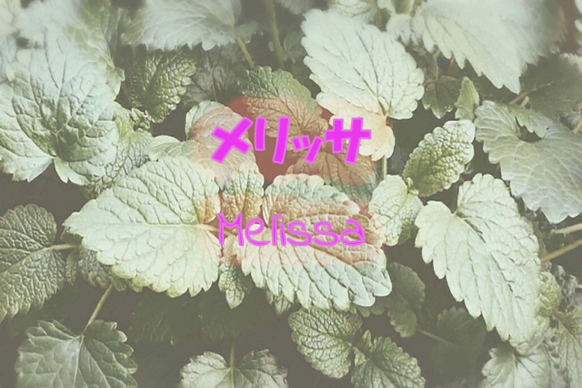 melissa_191117
