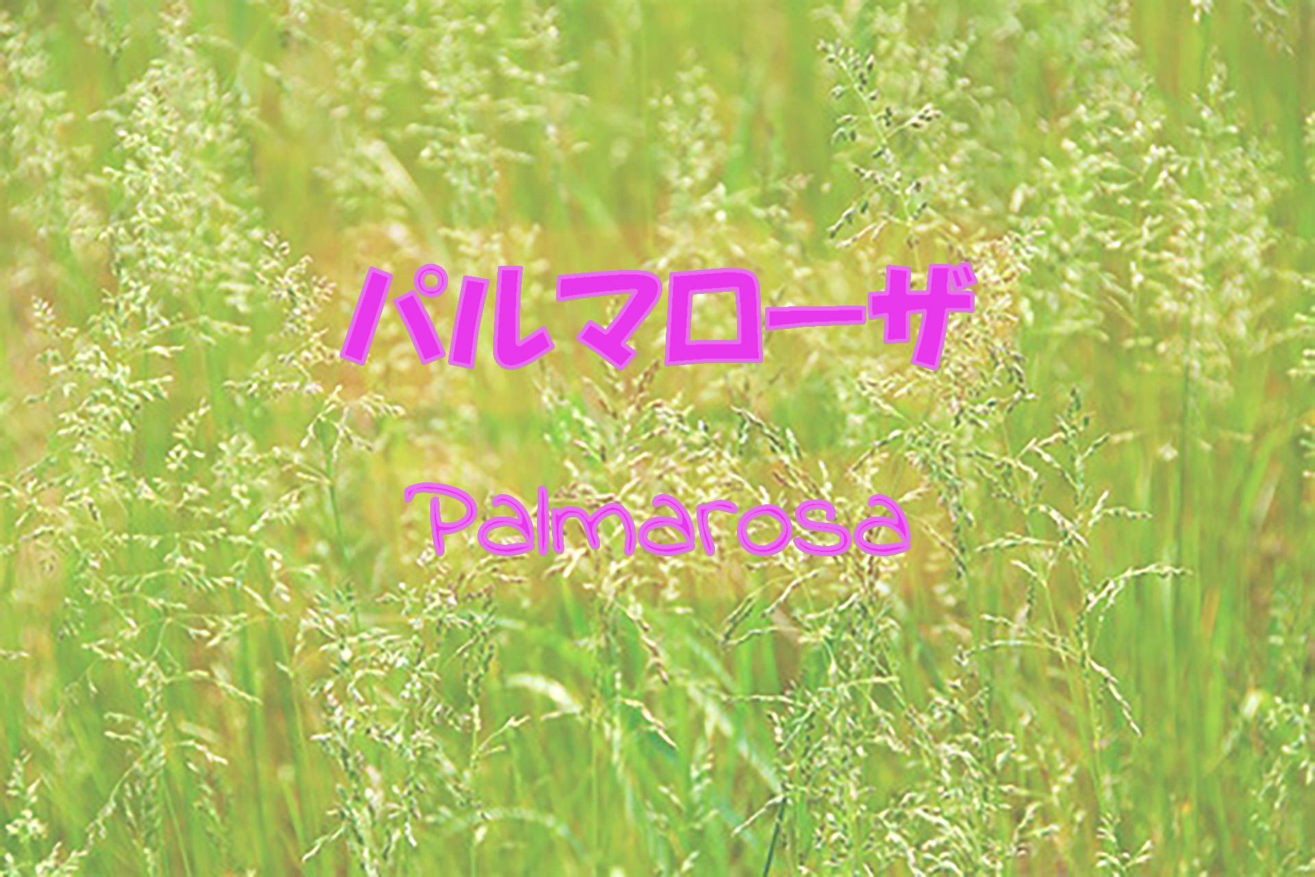 palmarosa_191117